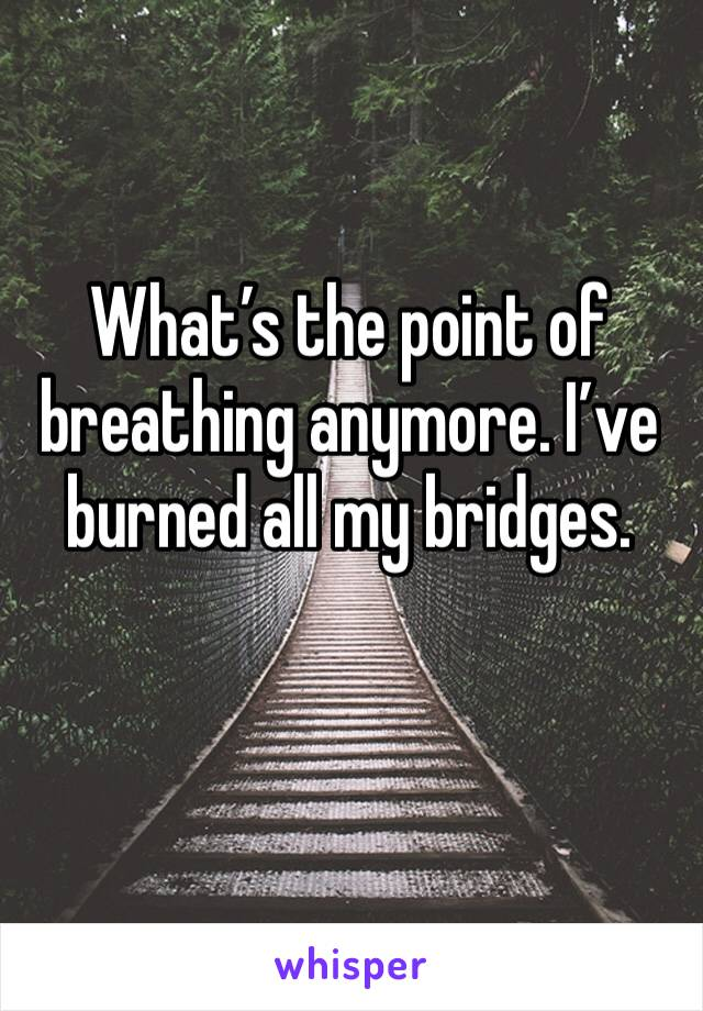 What's the point of breathing anymore. I've burned all my bridges.