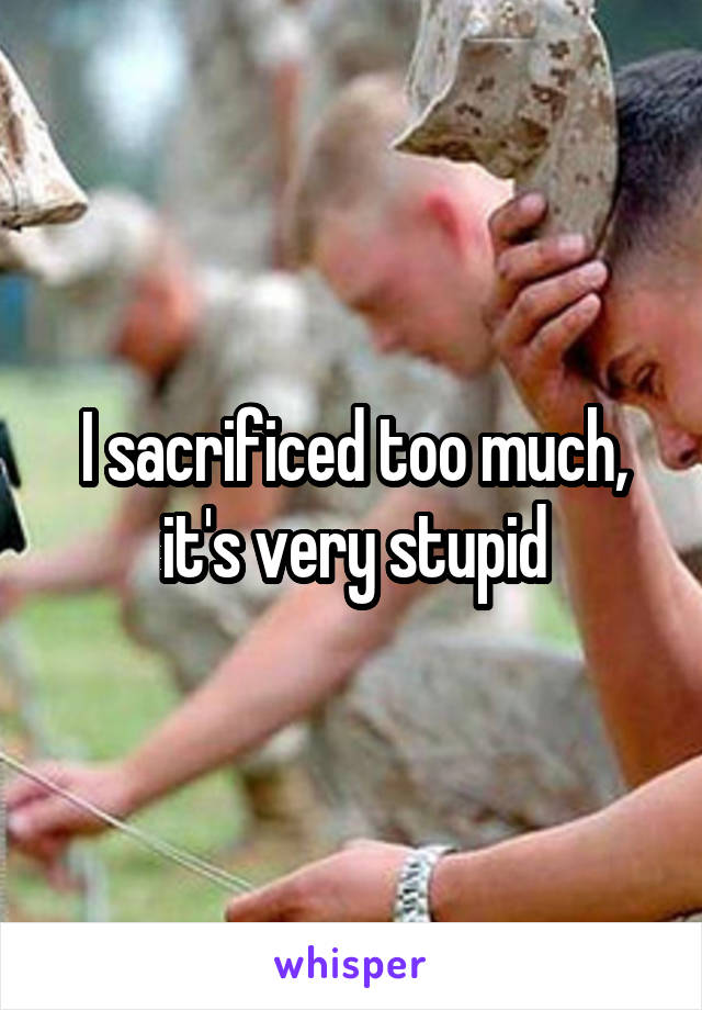 I sacrificed too much, it's very stupid