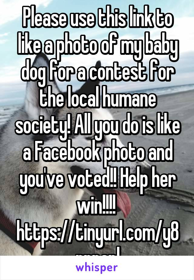 Please use this link to like a photo of my baby dog for a contest for the local humane society! All you do is like a Facebook photo and you've voted!! Help her win!!!!  https://tinyurl.com/y8pnpanl