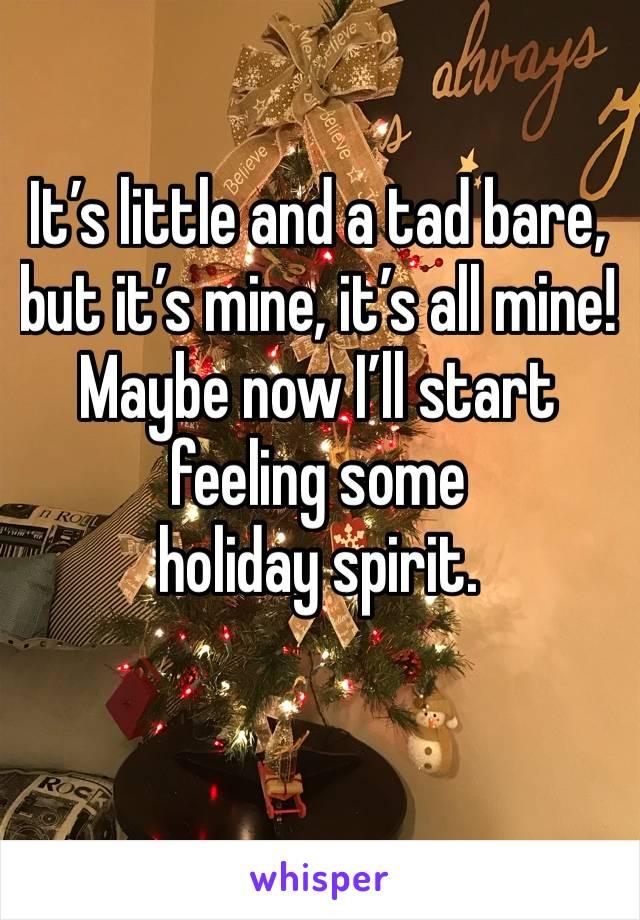 It's little and a tad bare, but it's mine, it's all mine! Maybe now I'll start feeling some  holiday spirit.