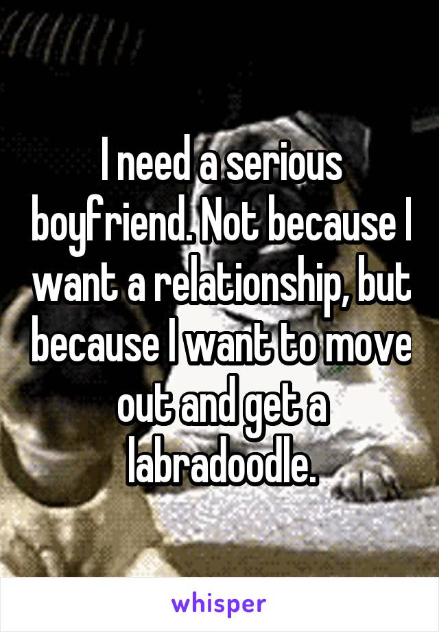 I need a serious boyfriend. Not because I want a relationship, but because I want to move out and get a labradoodle.