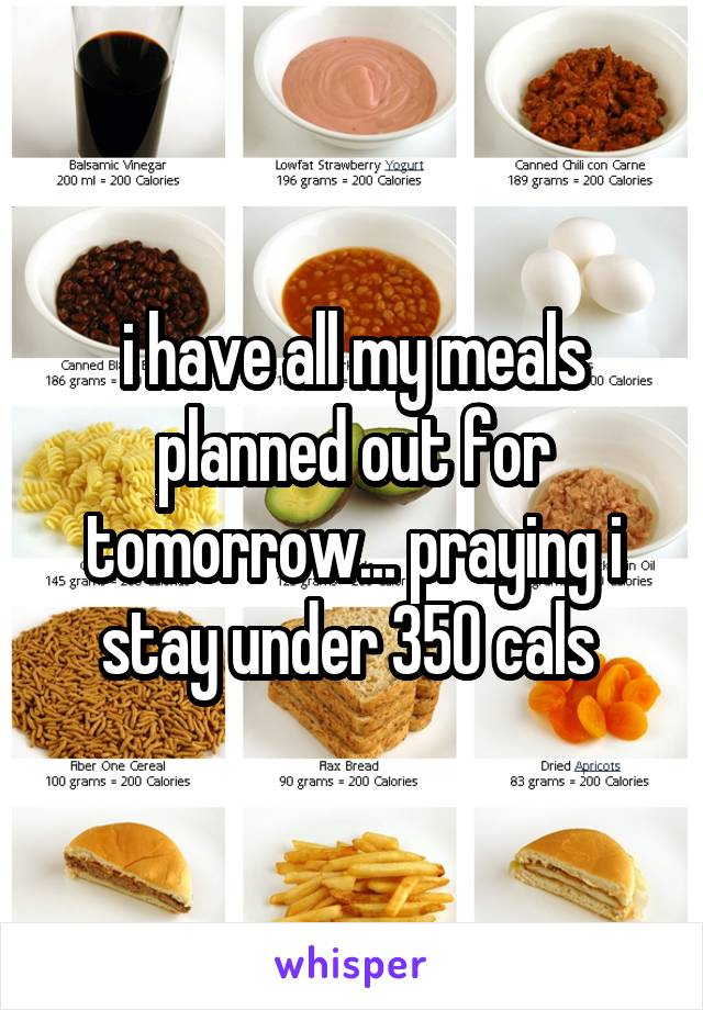 i have all my meals planned out for tomorrow... praying i stay under 350 cals