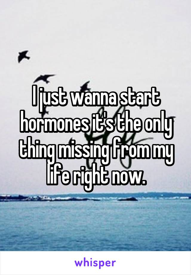 I just wanna start hormones it's the only thing missing from my life right now.
