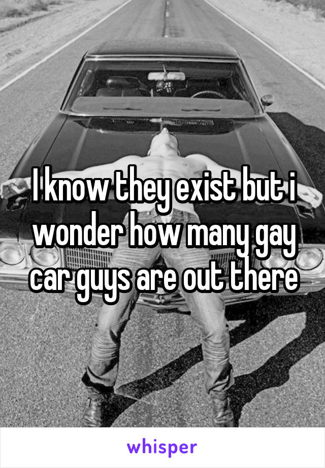 I know they exist but i wonder how many gay car guys are out there