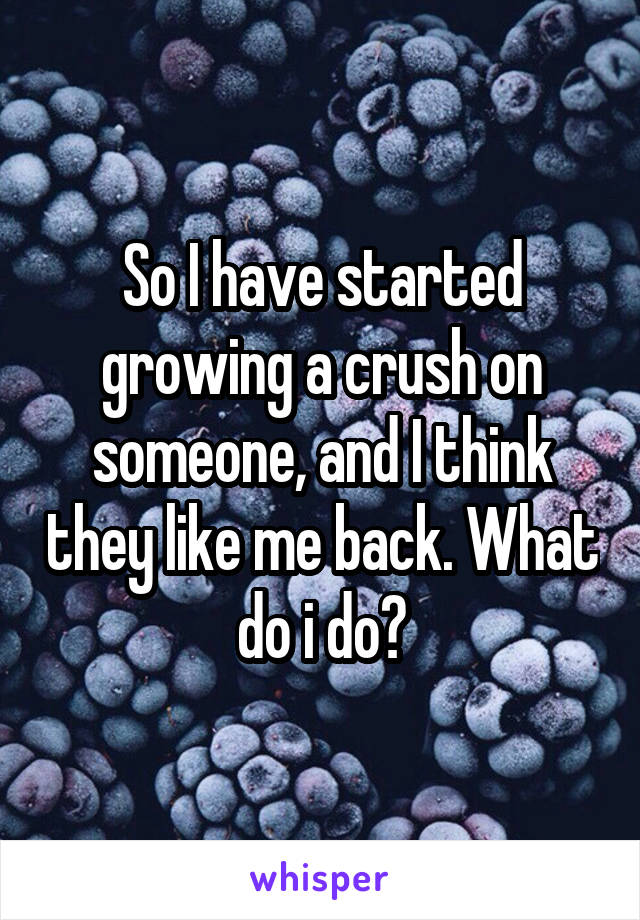 So I have started growing a crush on someone, and I think they like me back. What do i do?