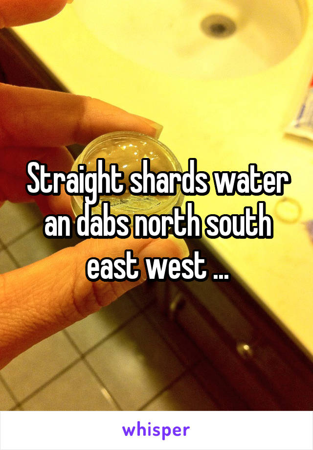 Straight shards water an dabs north south east west ...