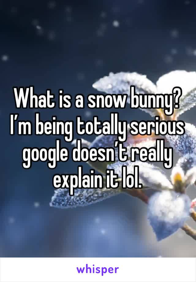 What is a snow bunny? I'm being totally serious google doesn't really explain it lol.