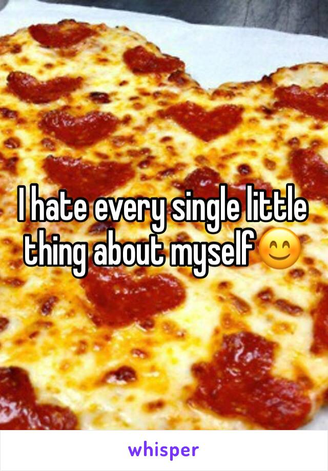 I hate every single little thing about myself😊