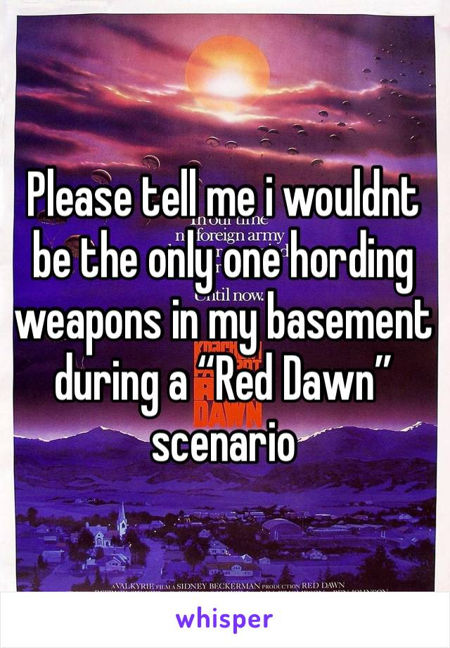 "Please tell me i wouldnt be the only one hording weapons in my basement during a ""Red Dawn"" scenario"