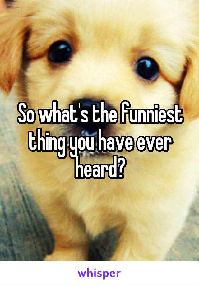 So what's the funniest thing you have ever heard?