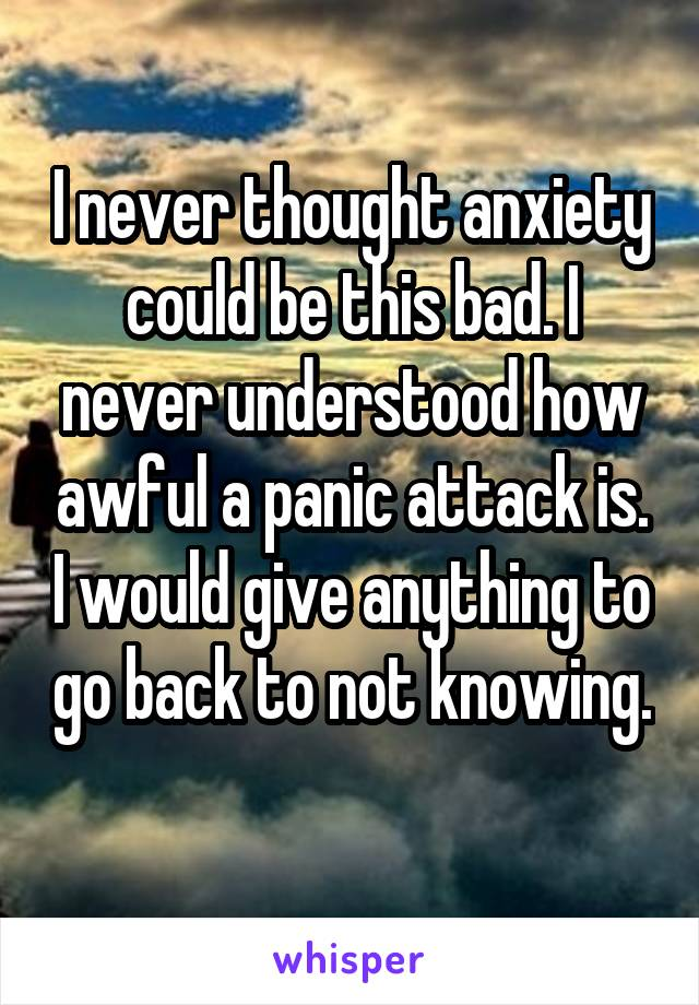 I never thought anxiety could be this bad. I never understood how awful a panic attack is. I would give anything to go back to not knowing.
