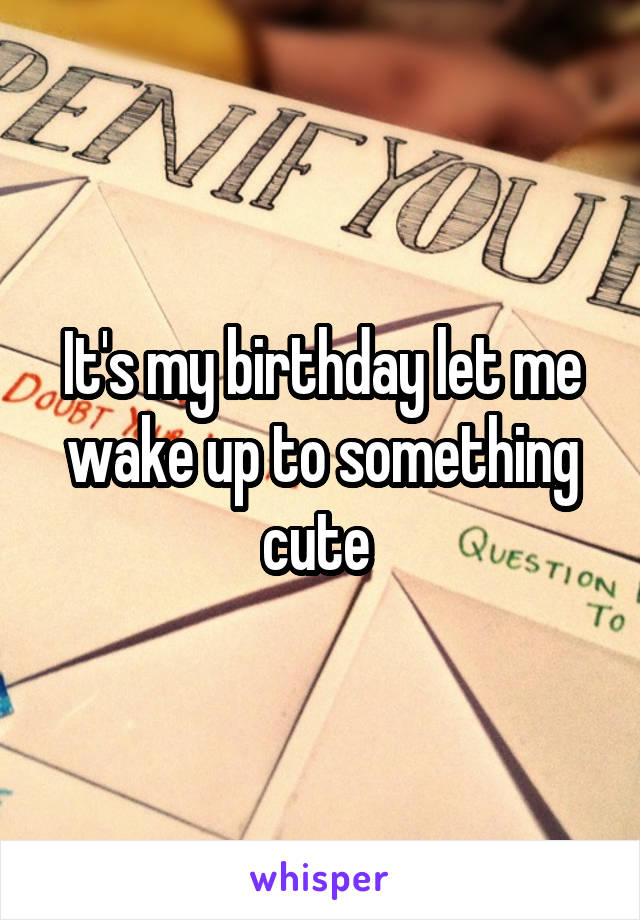 It's my birthday let me wake up to something cute