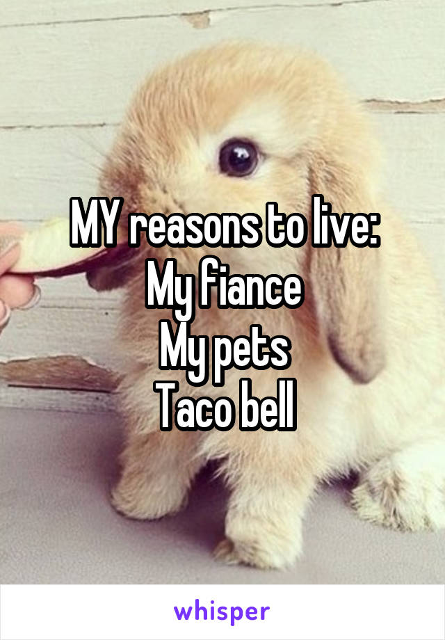 MY reasons to live: My fiance My pets Taco bell