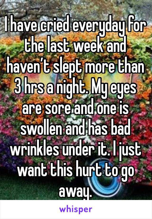 I have cried everyday for the last week and haven't slept more than 3 hrs a night. My eyes are sore and one is swollen and has bad wrinkles under it. I just want this hurt to go away.