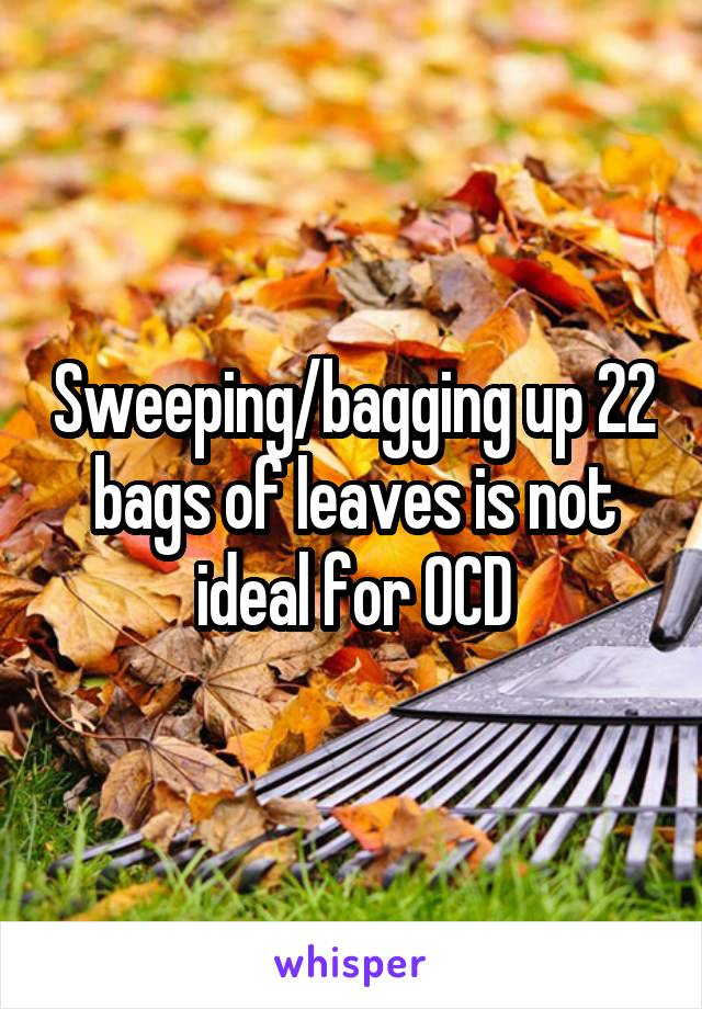 Sweeping/bagging up 22 bags of leaves is not ideal for OCD