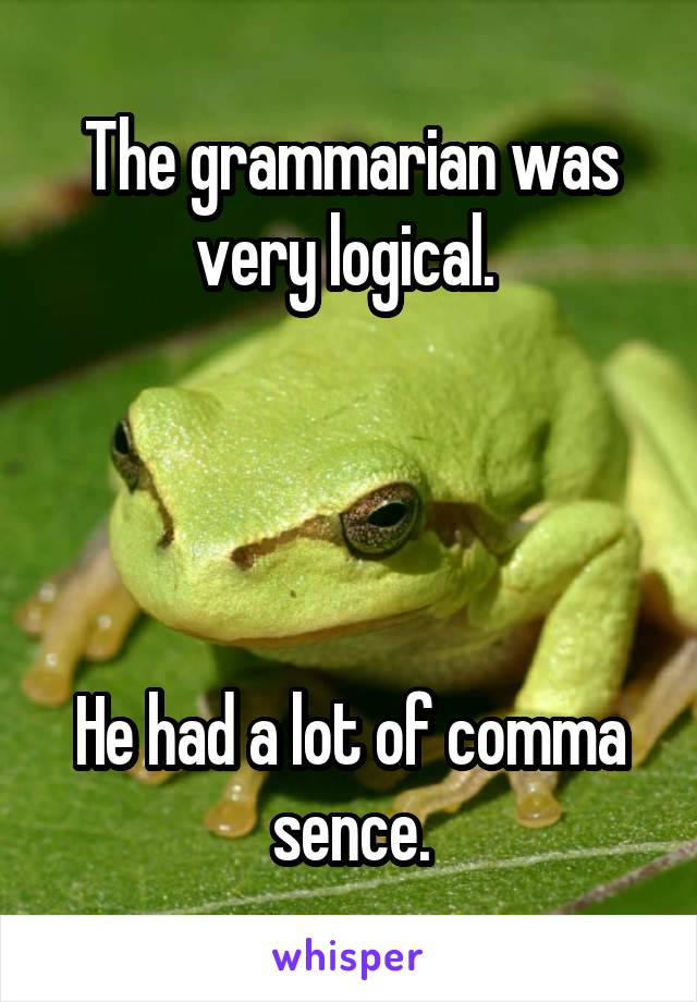 The grammarian was very logical.      He had a lot of comma sence.