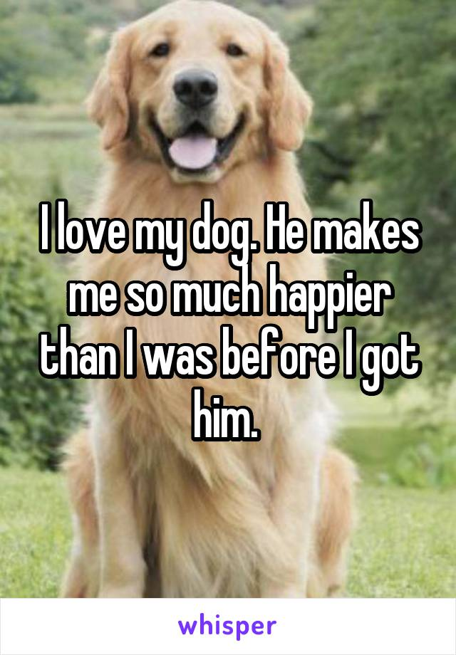 I love my dog. He makes me so much happier than I was before I got him.