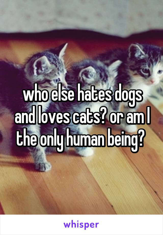 who else hates dogs and loves cats? or am I the only human being?