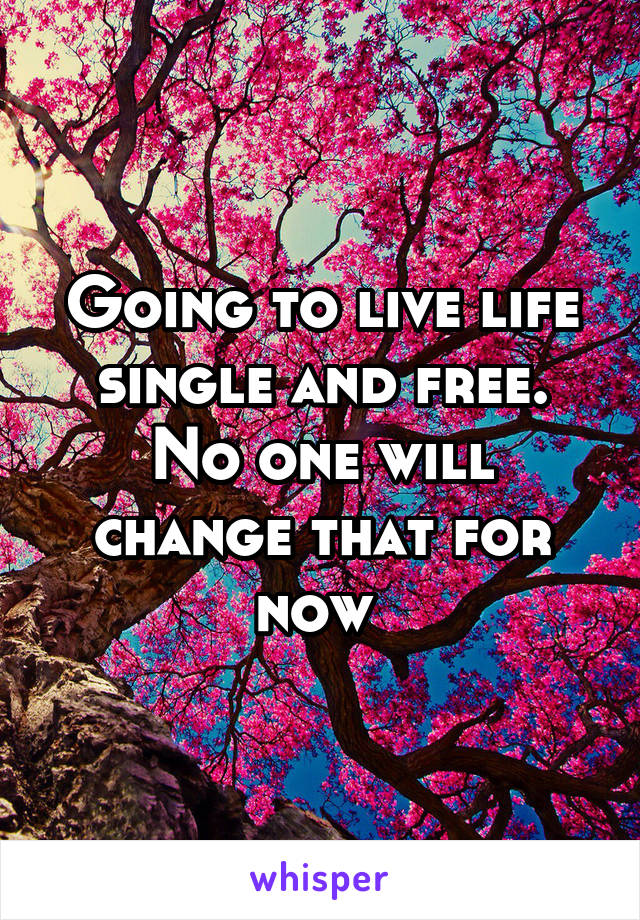 Going to live life single and free. No one will change that for now
