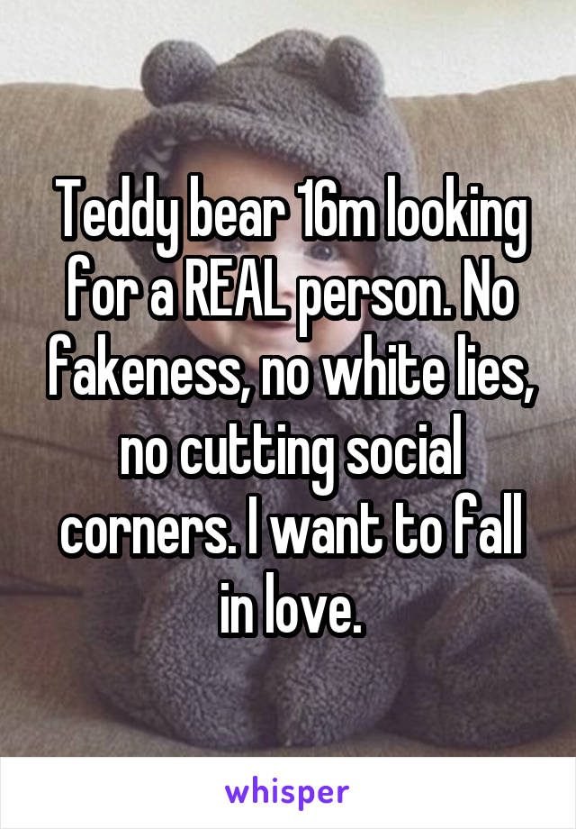 Teddy bear 16m looking for a REAL person. No fakeness, no white lies, no cutting social corners. I want to fall in love.