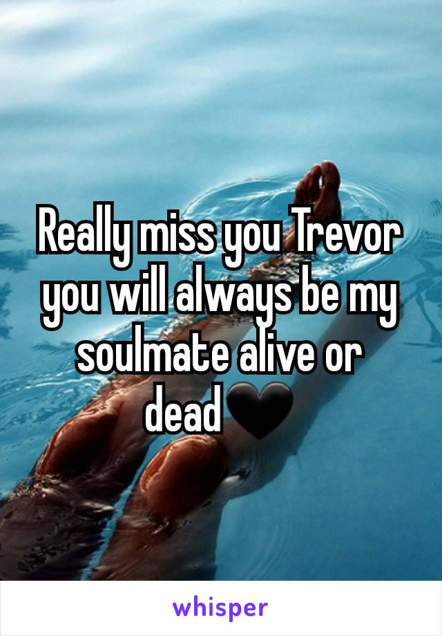 Really miss you Trevor you will always be my soulmate alive or dead🖤