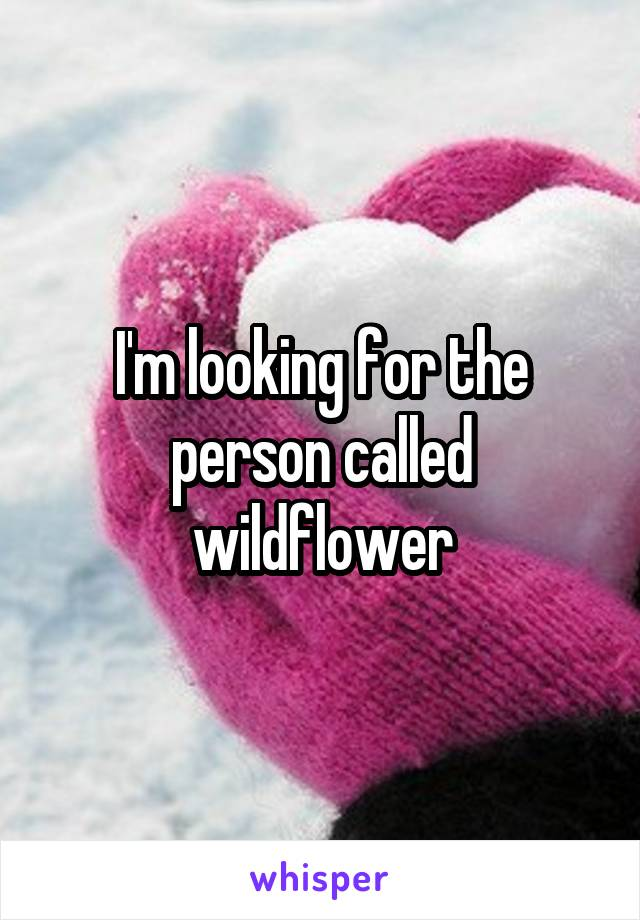 I'm looking for the person called wildflower