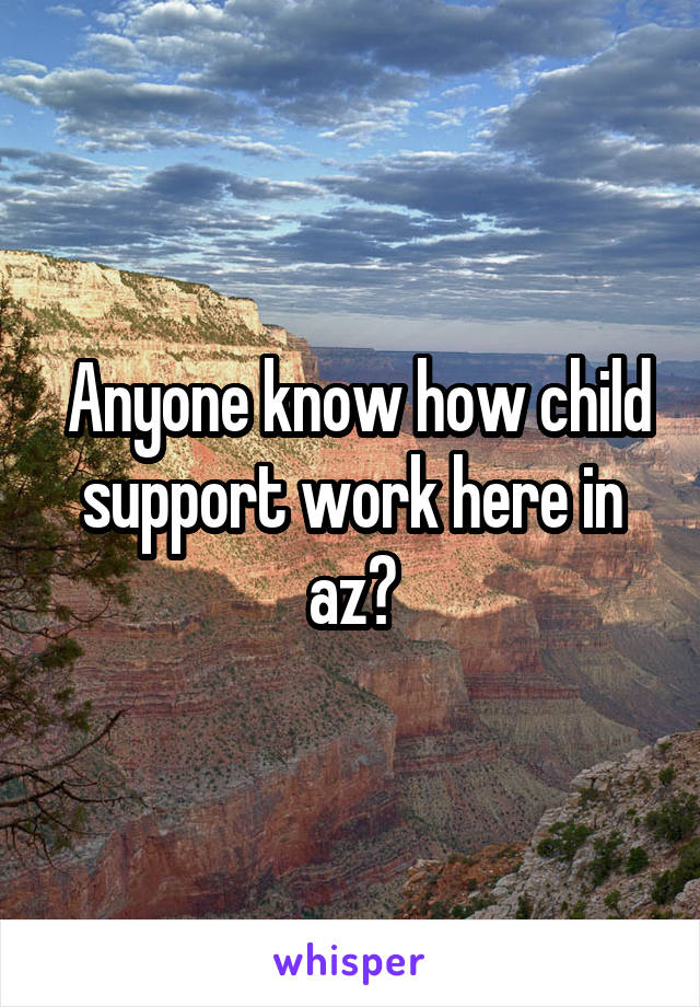 Anyone know how child support work here in az?