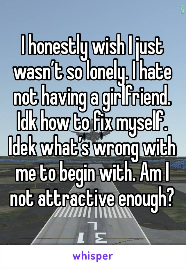 I honestly wish I just wasn't so lonely. I hate not having a girlfriend. Idk how to fix myself. Idek what's wrong with me to begin with. Am I not attractive enough?