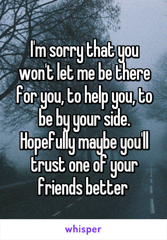 I'm sorry that you won't let me be there for you, to help you, to be by your side. Hopefully maybe you'll trust one of your friends better