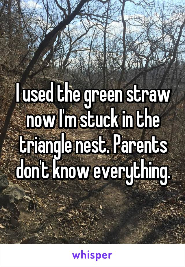 I used the green straw now I'm stuck in the triangle nest. Parents don't know everything.
