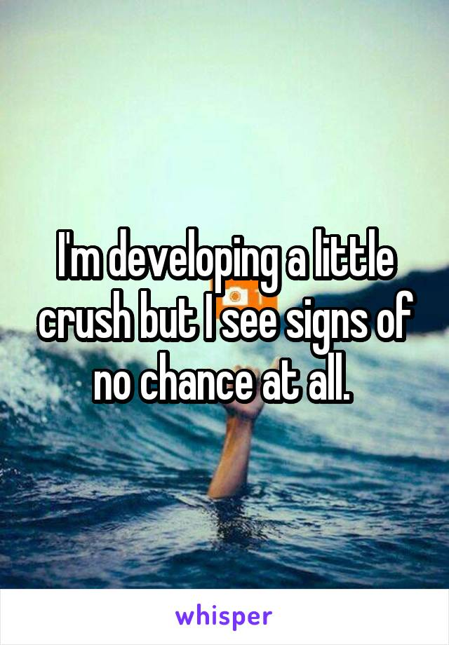 I'm developing a little crush but I see signs of no chance at all.