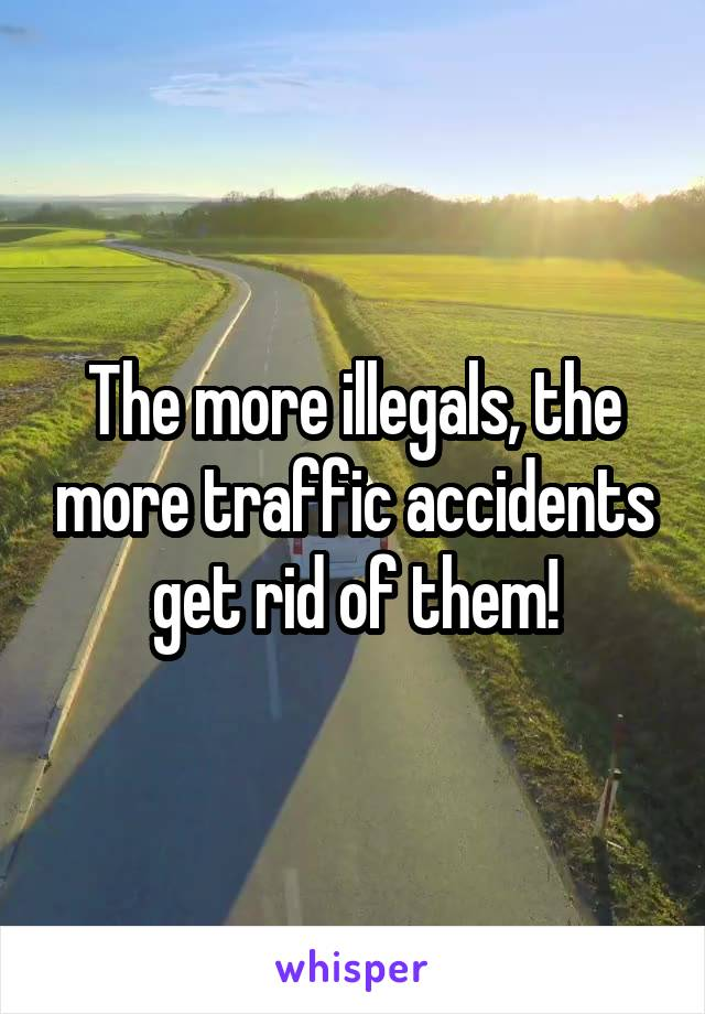 The more illegals, the more traffic accidents get rid of them!
