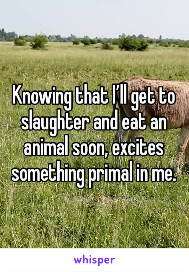 Knowing that I'll get to slaughter and eat an animal soon, excites something primal in me.