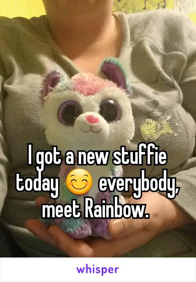 I got a new stuffie today 😊 everybody, meet Rainbow.