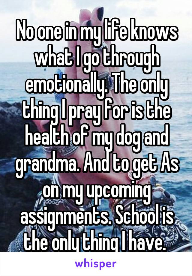 No one in my life knows what I go through emotionally. The only thing I pray for is the health of my dog and grandma. And to get As on my upcoming assignments. School is the only thing I have.