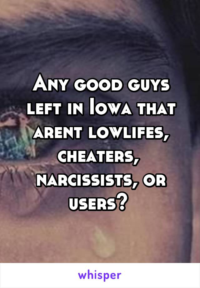 Any good guys left in Iowa that arent lowlifes, cheaters,  narcissists, or users?