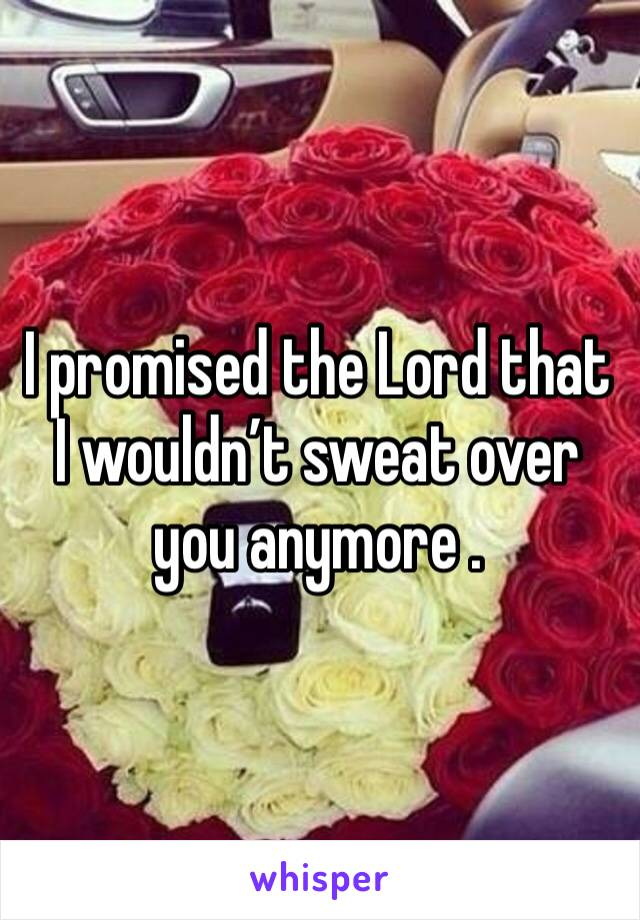 I promised the Lord that I wouldn't sweat over you anymore .