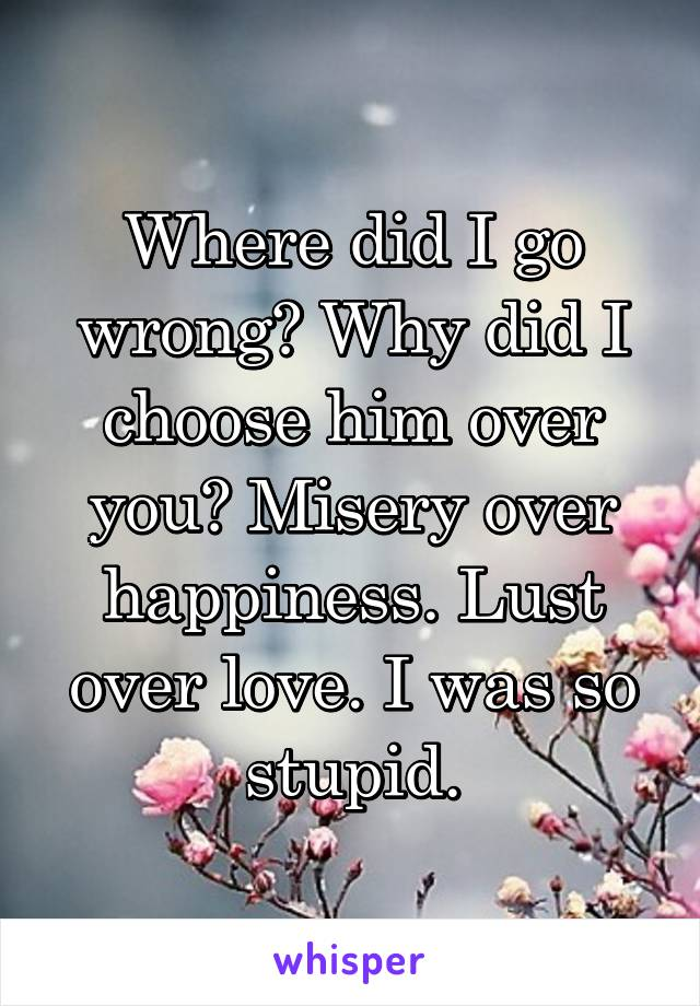 Where did I go wrong? Why did I choose him over you? Misery over happiness. Lust over love. I was so stupid.