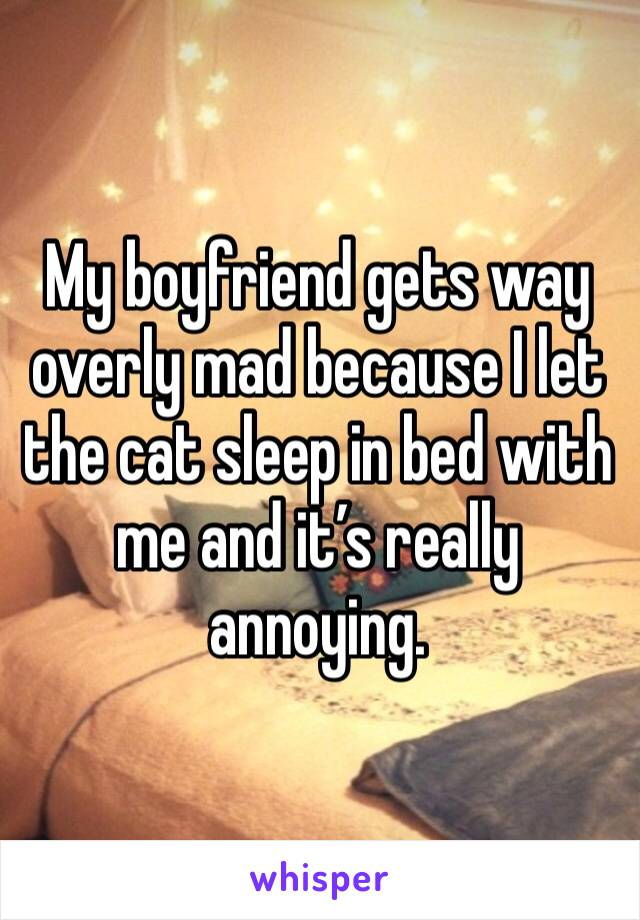 My boyfriend gets way overly mad because I let the cat sleep in bed with me and it's really annoying.