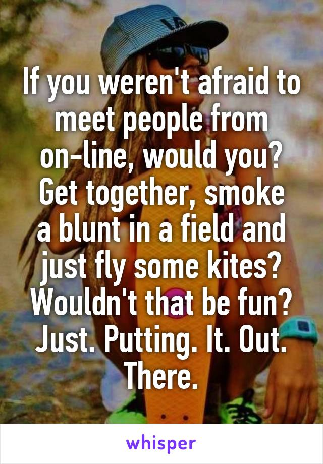 If you weren't afraid to meet people from on-line, would you? Get together, smoke a blunt in a field and just fly some kites? Wouldn't that be fun? Just. Putting. It. Out. There.