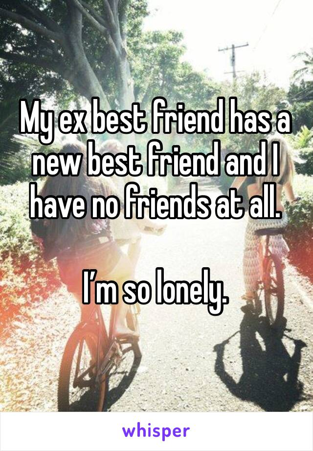 My ex best friend has a new best friend and I have no friends at all.    I'm so lonely.