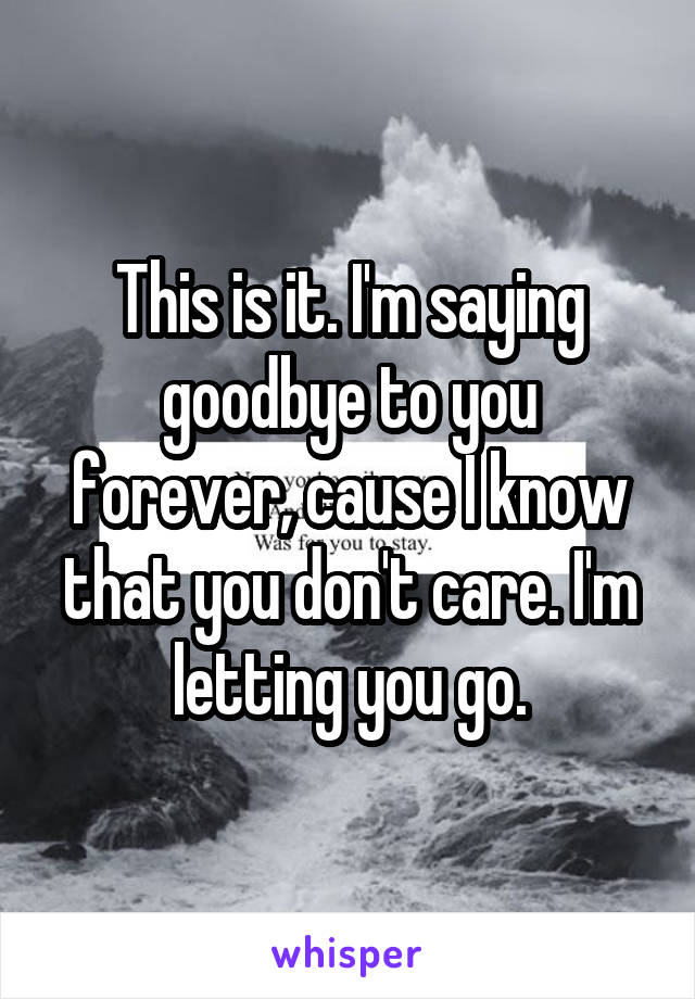 This is it. I'm saying goodbye to you forever, cause I know that you don't care. I'm letting you go.