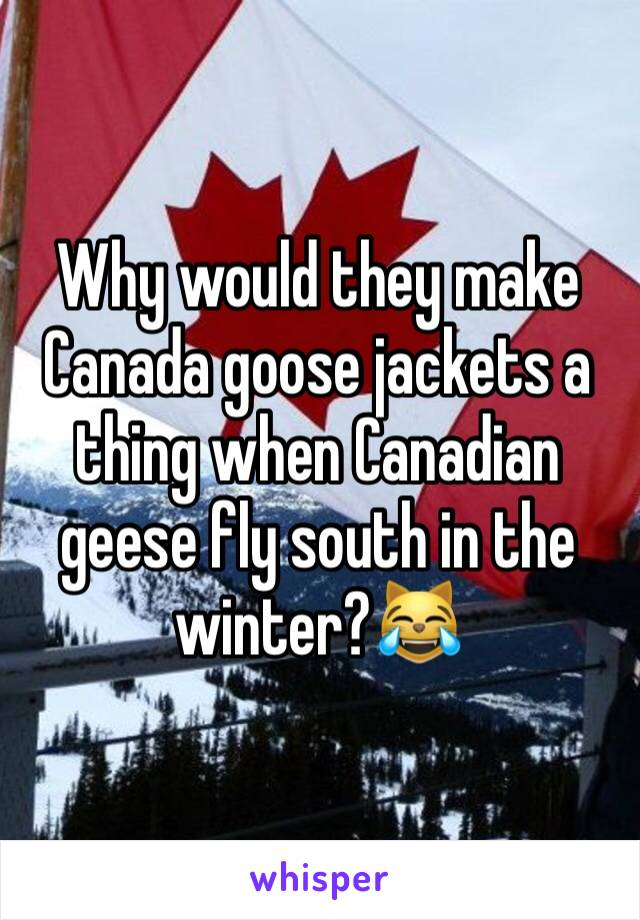 Why would they make Canada goose jackets a thing when Canadian geese fly south in the winter?😹