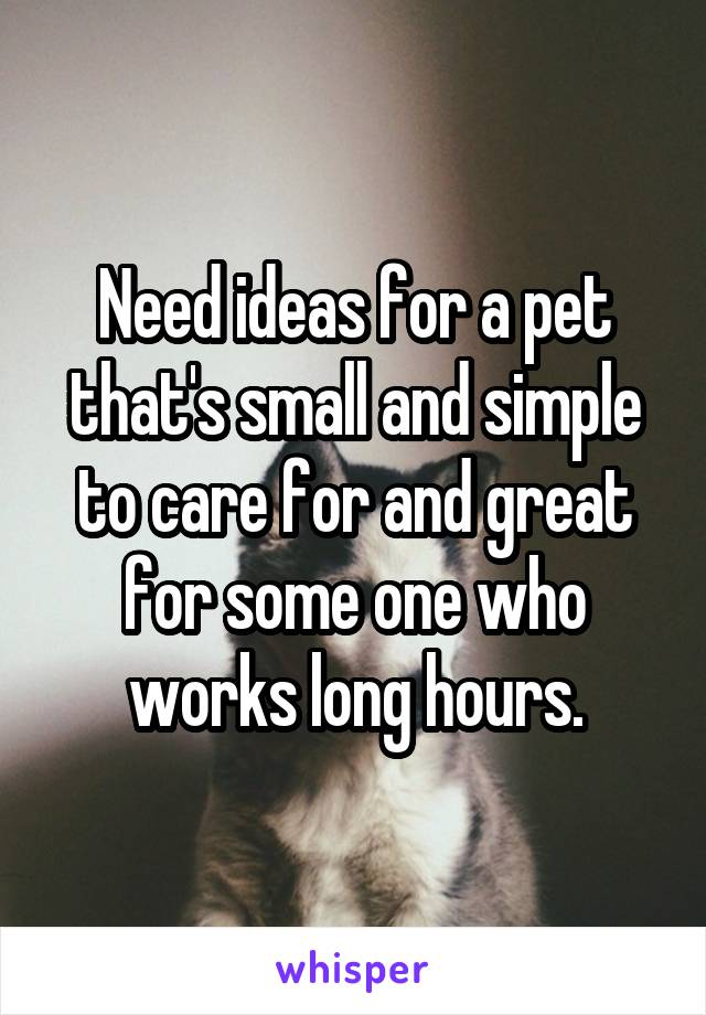 Need ideas for a pet that's small and simple to care for and great for some one who works long hours.
