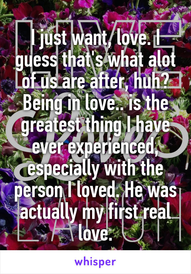 I just want, love. I guess that's what alot of us are after, huh? Being in love.. is the greatest thing I have ever experienced, especially with the person I loved. He was actually my first real love.