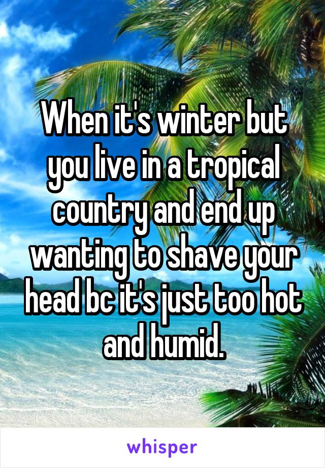When it's winter but you live in a tropical country and end up wanting to shave your head bc it's just too hot and humid.
