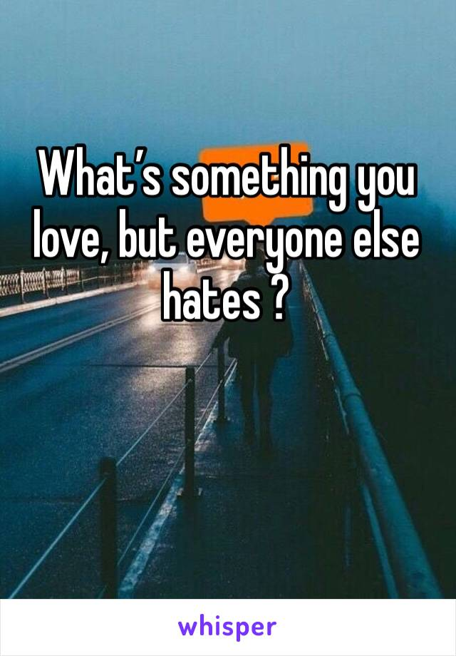 What's something you love, but everyone else hates ?