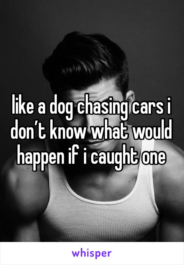 like a dog chasing cars i don't know what would happen if i caught one