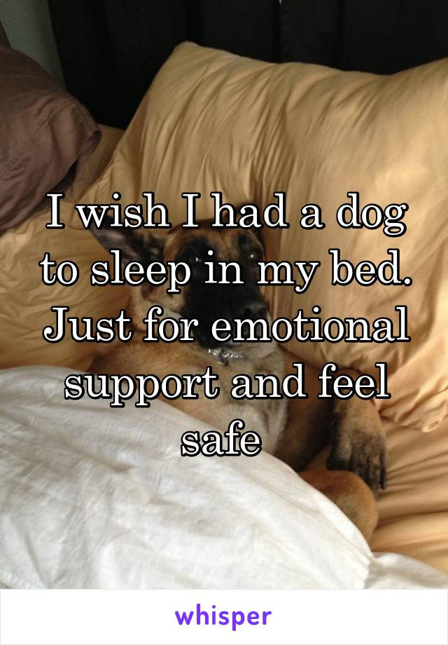 I wish I had a dog to sleep in my bed. Just for emotional support and feel safe