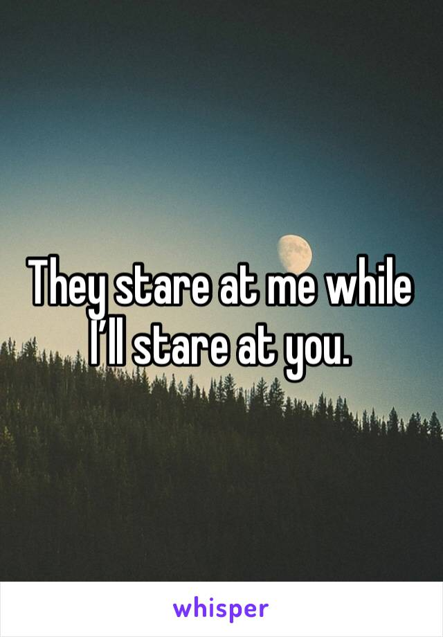 They stare at me while I'll stare at you.